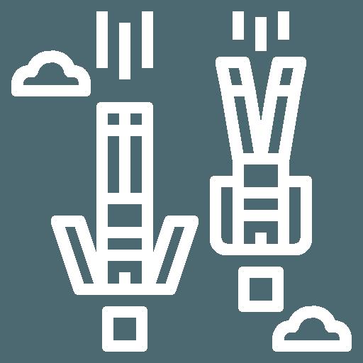 logo freefly Brienne Aube Parachutisme Centre saut en parachute proche de Paris