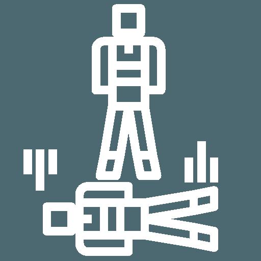logo freestyle brienne aube parachutisme centre de saut en parachute proche de Paris