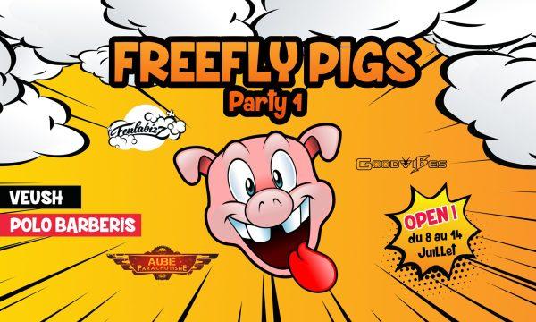 Première de l'événement Freefly Pigs co-organisé par Brienne Aube Parachutisme, Vincent COTTE alias Veush et Polo Barberis alias Fenlabizz
