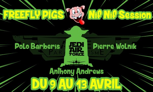 Event Parachutisme FreeFly PiGs 2020 animé par la Jedi Air Force